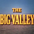 bigvalley_logo