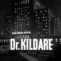 kildare_logo