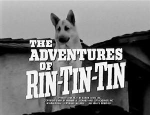 As Aventuras de Rin-Tin-Tin (The Adventures of Rin-Tin-Tin – 1954) | InfanTv -