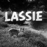 Lassie (Lassie – 1954)